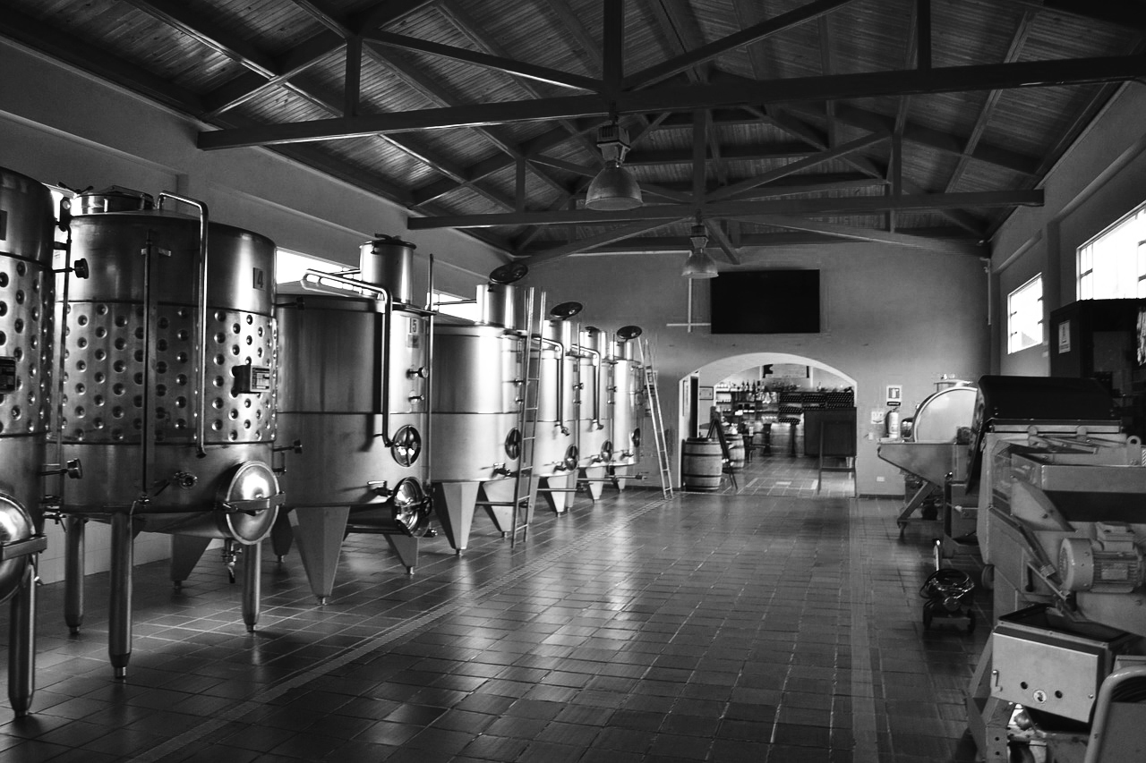 Consider the costs of production in your business plan when buying a winery
