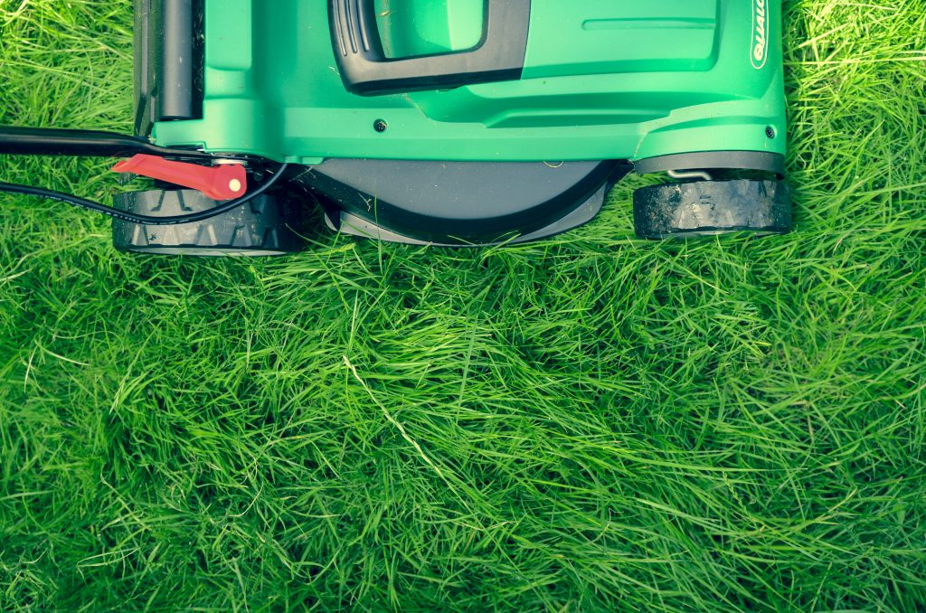 lawn_mower_grass_backyard