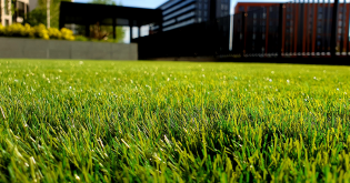 Artificial turf – fake it 'till you make it?