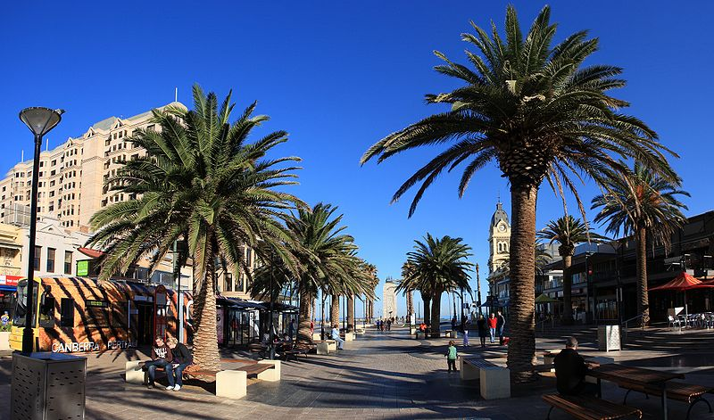 A street view of Glenelg including palm trees and large buildings.