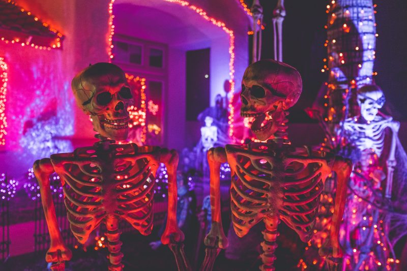 halloween_skeleton_holiday