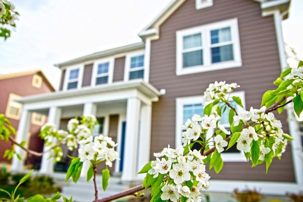 Spring property market: a home with spring flowers in bloom