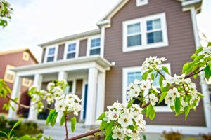 How is the 2017 spring property market tracking?
