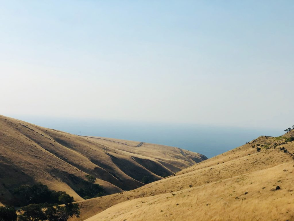 The Fleurieu Peninsula in South Australia is famous for its rich soils and stunning vistas.