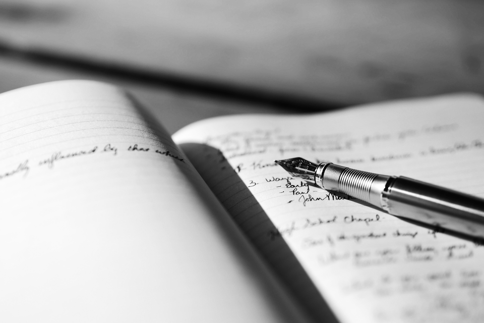 Richard Shrapnel's 'The CEO's Journal – A Record Of Learnings'.