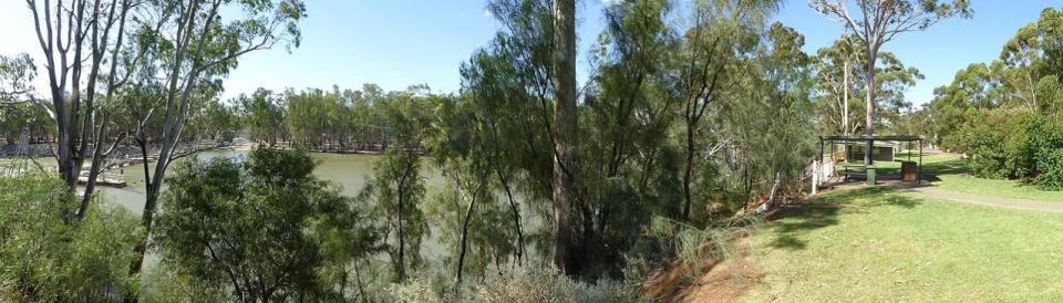 Murray River Lock 15 & Weir