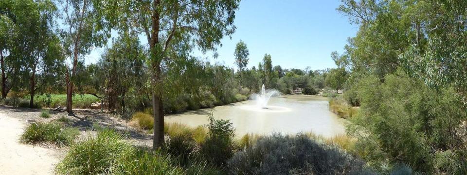 Malloo Street Wetlands