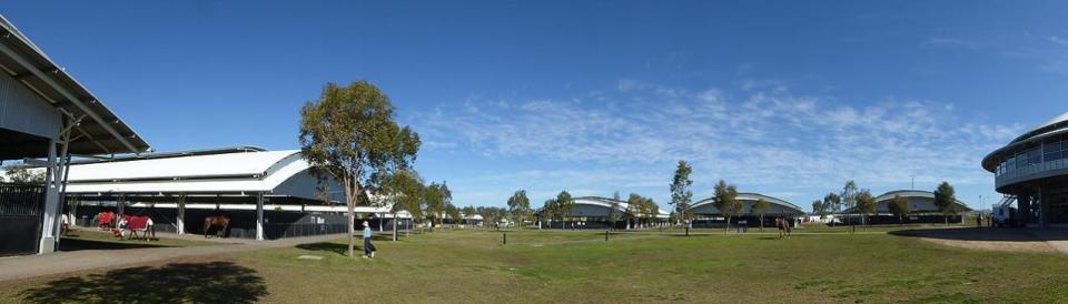 AELEC Australian Equine & Livestock Events Centre