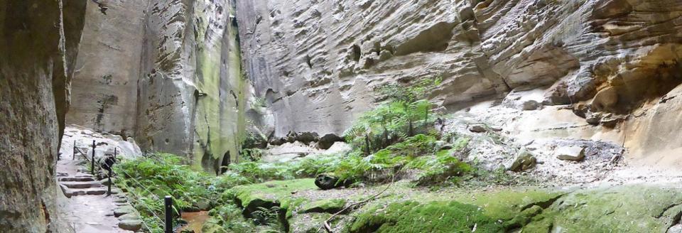 Carnarvon Gorge - Amphitheatre