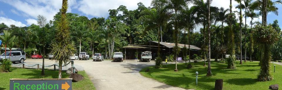 Lync-Haven Motel Camping