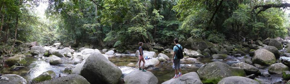 Mossman Gorge - Rainforest Swimming Hole 1