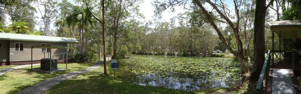 NRMA Darlington Beach Holiday Park - Cabins