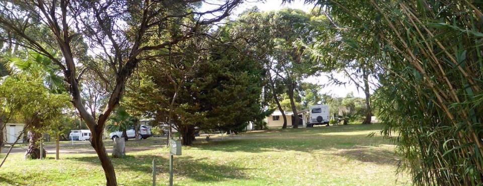 Pine Grove Holiday & Caravan Park