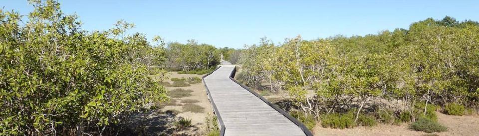 Karumba to Karumba Point Walkway