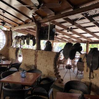 Lazy Lizard Caravan Park & Tavern