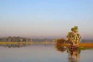 Click to see more of Yellow Water Cruises - Gagudju Dreaming, Cooinda Lodge Kakadu NT