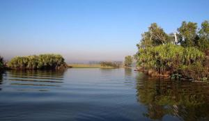 Go to Yellow Water Cruises - Gagudju Dreaming, Cooinda Lodge Kakadu NT