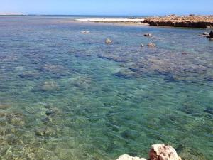 Go to The Aquarium, Point Quobba WA
