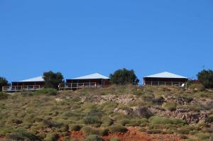 Go to Ningaloo Lighthouse Caravan Park, Cape Range NP WA