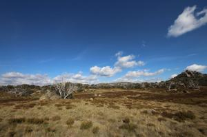 Click to see more of Mt Buffalo NP, Porepunkah VIC