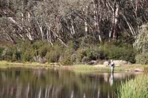 Go to Lake Catani - Mt Buffalo, Porepunkah VIC