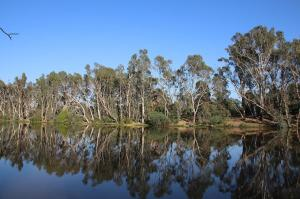 Click to see more of Bridgewater On Loddon, VIC