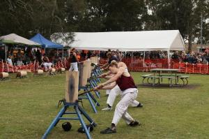 Go to Karuah Oyster and Timber Festival, Karuah NSW