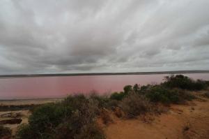 Click to see more of Hutt Lagoon, WA