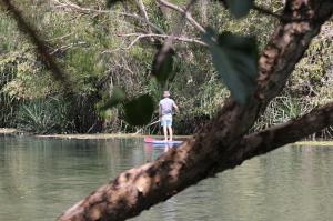 Click to see more of SUP board riding at Adels Grove, Adels Grove QLD