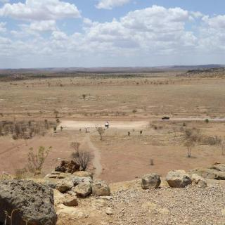 Australian Fossil Mammal Site Riversleigh