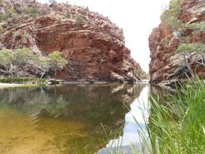 Go to Ellery Creek Big Hole, West MacDonnell NP NT