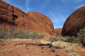 Go to Valley of the Winds - Karingana Lookout, Kata Tjuta (Olgas) NT