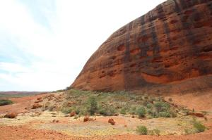 Click to see more of Walpa Gorge Walk, Kata Tjuta (Olgas) NT