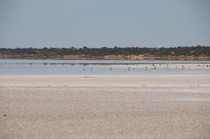 Click to see more of Lake Hart, Woomera SA
