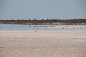 Go to Lake Hart, Woomera SA