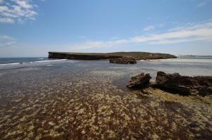 Click to see more of Pondalowie Bay, Innes NP SA