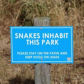 Bashams Beach Regional Park