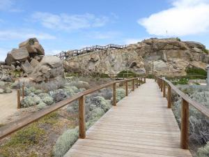 Go to Granite Island, Victor Harbor SA