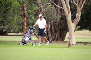 Go to Victor Harbor Golf Club, Victor Harbor SA