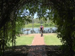 Go to Renmark Riverfront Interpretive Walk, Renmark SA