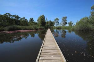 Click to see more of Banrock Station Boardwalk Trail, Kingston On Murray SA