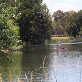 SUPing at Lake Ginninderra