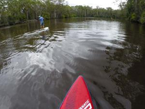Go to SUPing at Failford, Failford NSW
