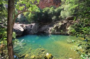 Go to Emma Gorge, El Questro WA