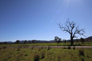 Go to Lochiel Downs, Narrabri NSW
