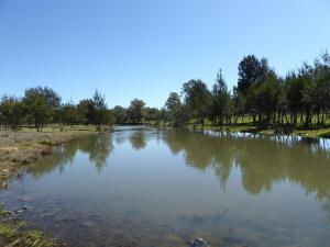 Click to see more of Lochiel Downs, Narrabri NSW