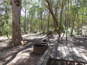 Go to Bark Hut Camping Area, Kaputar NSW