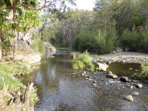 Go to Carnarvon Gorge - Rock Pool, Rolleston QLD