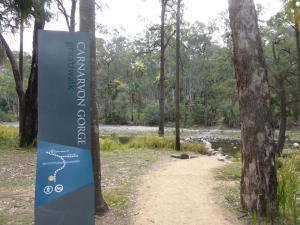 Go to Carnarvon Gorge - Visitor Centre, Rolleston QLD