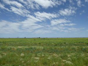 Go to Isisford Blackall Road, Isisford QLD